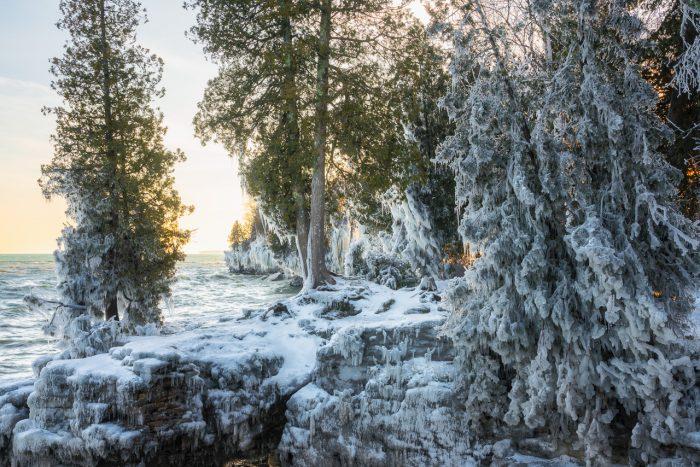 Frozen Lakeshore