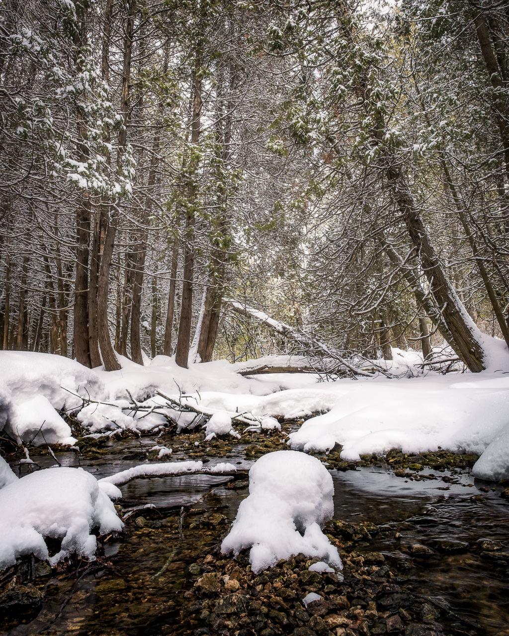 Snowy Creek 1