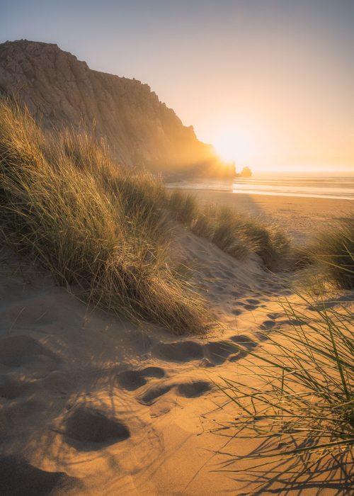 Path Among The Dunes