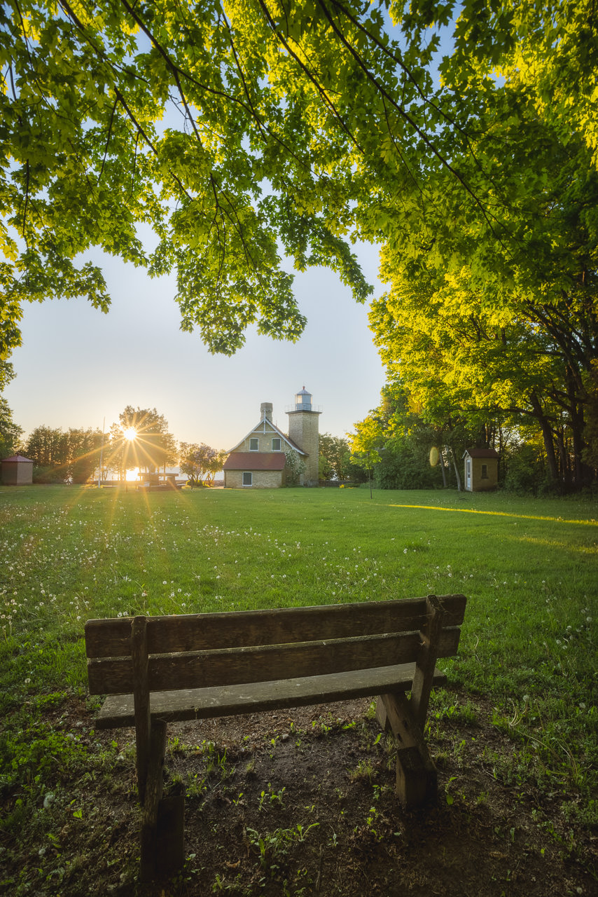 Evening in the Park