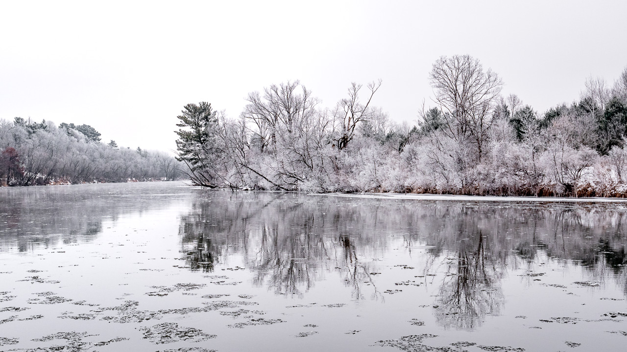 Icy Riverbank