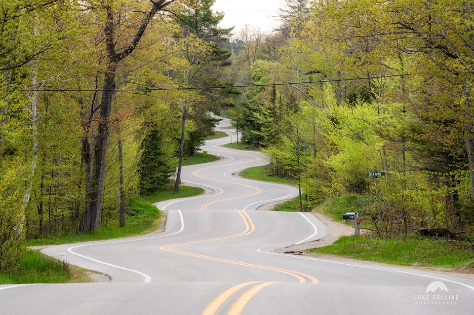 winding road in spring